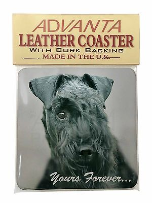 Kerry Blue Terrier 'Yours Forever' Single Leather Photo Coaster Anima, AD-KB1ySC