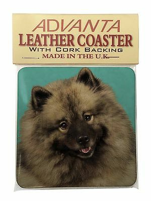 Keeshond Dog Single Leather Photo Coaster Animal Breed Gift, AD-KEE1SC