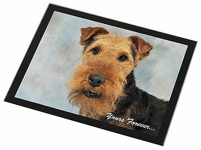 Welsh Terrier 'Yours Forever' Black Rim Glass Placemat Animal Table G, AD-WT1yGP