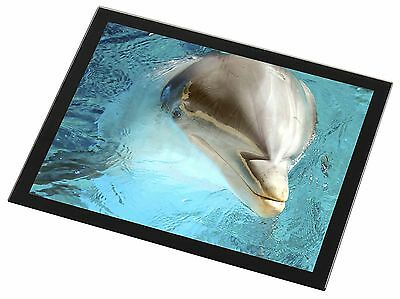 Dolphin Close-Up Black Rim Glass Placemat Animal Table Gift, AF-D5GP