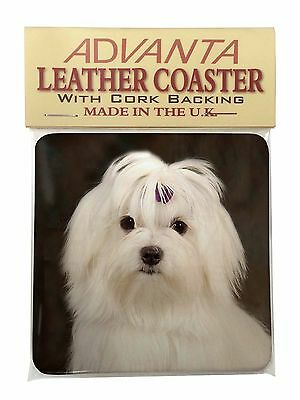 Maltese Dog Single Leather Photo Coaster Animal Breed Gift, AD-M1SC