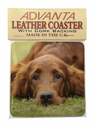 Irish Red Setter Puppy Dog Single Leather Photo Coaster Animal Breed G, AD-RS2SC