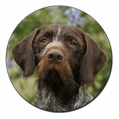 German Wirehaired Pointer Fridge Magnet Stocking Filler Christmas Gif, AD-GWP1FM