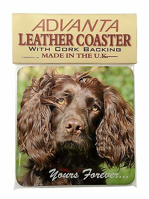 Chocolate Spaniel 'Yours Forever' Single Leather Photo Coaster Animal, AD-SC4ySC