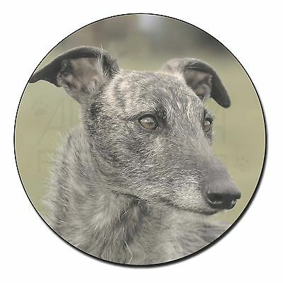 Rough Coated Lurcher Fridge Magnet Stocking Filler Christmas Gift AD-LU6FM