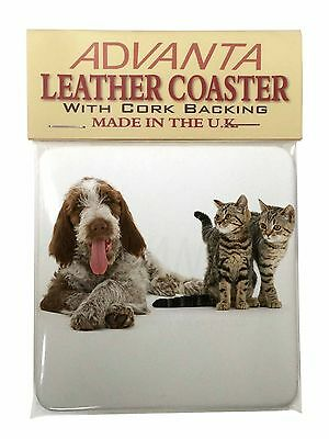 Italian Spinone Dog and Kittens Single Leather Photo Coaster Animal Br, AD-SP1SC