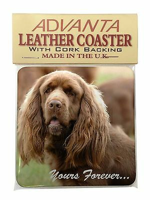 Sussex Spaniel 'Yours Forever' Single Leather Photo Coaster Animal B, AD-SUS1ySC