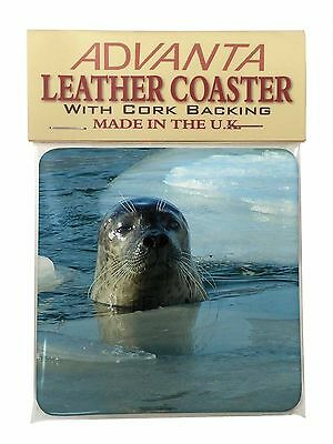 Sea Lion in Ice Water Single Leather Photo Coaster Animal Breed Gift, AF-S2SC