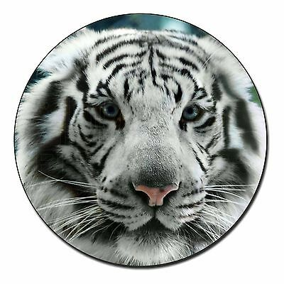 White Tiger Fridge Magnet Stocking Filler Christmas Gift AT-48FM