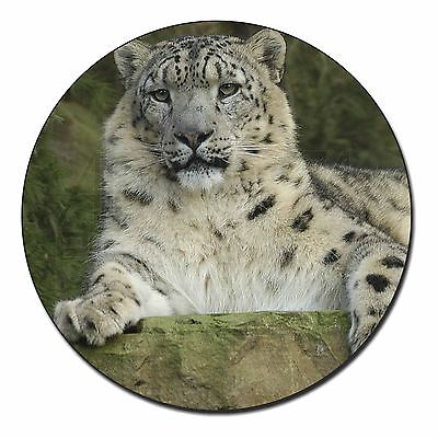 Beautiful Snow Leopard Fridge Magnet Stocking Filler Christmas Gift, AT-47FM