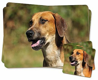 Foxhound Dog Twin 2x Placemats+2x Coasters Set in Gift Box, AD-FH1PC