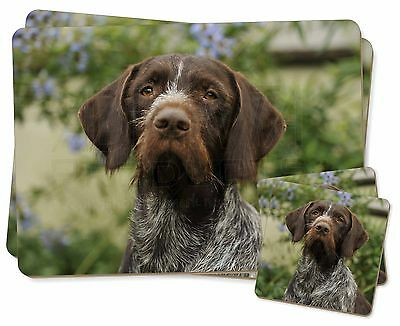 German Wirehaired Pointer Twin 2x Placemats+2x Coasters Set in Gift B, AD-GWP1PC