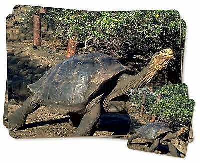 Giant Galapagos Tortoise Twin 2x Placemats+2x Coasters Set in Gift Box, AR-T10PC