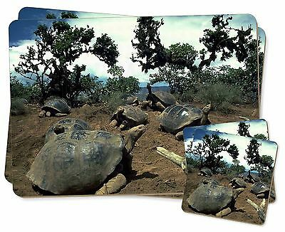 Galapagos Tortoise Twin 2x Placemats+2x Coasters Set in Gift Box, AR-T11PC