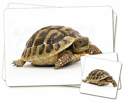 A Cute Tortoise Twin 2x Placemats+2x Coasters Set in Gift Box, AR-T16PC