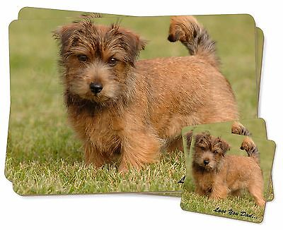 Norwich/Norfolk Terrier 'Love You Dad' Twin 2x Placemats+2x Coasters S, DAD-80PC