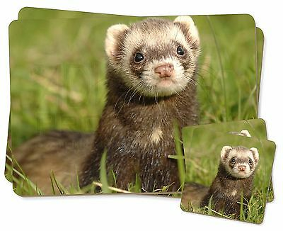 Polecat Ferret Twin 2x Placemats+2x Coasters Set in Gift Box, FER-1PC