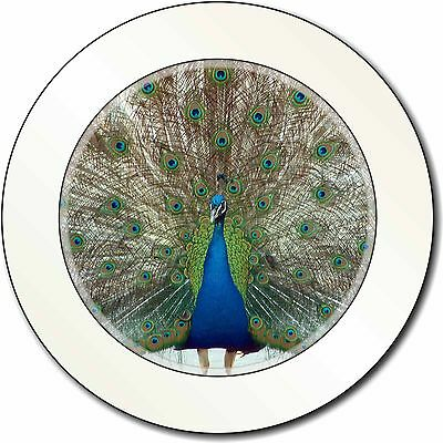 Rainbow Feathers Peacock Car/Van Permit Holder/Tax Disc Gift, AB-PE13T