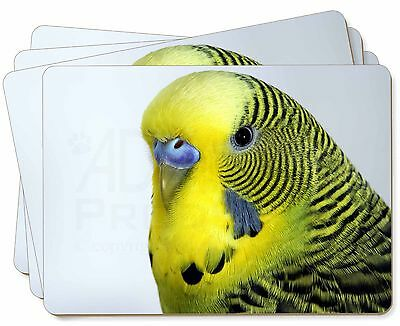 Yellow Budgerigar, Budgie Picture Placemats in Gift Box, AB-51P