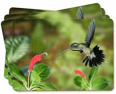 Green Hermit Humming Bird Picture Placemats in Gift Box, AB-95P