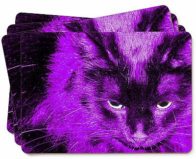Black Cat in Pink Purple Night Lights Picture Placemats in Gift Box, AC-301P