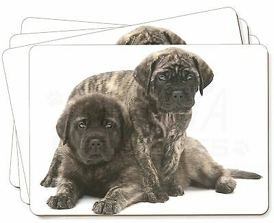 Bullmastiff Dog Puppies Picture Placemats in Gift Box, AD-BMT2P