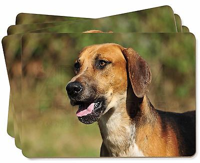 Foxhound Dog Picture Placemats in Gift Box, AD-FH1P