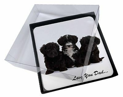 4x Yorkipoo Pups 'Love You Dad' Picture Table Coasters Set in Gift Box, DAD-139C