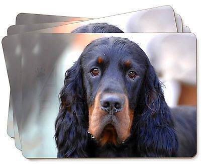 Gordon Setter Dog Picture Placemats in Gift Box, AD-GOR2P