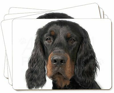 Gordon Setter Picture Placemats in Gift Box, AD-GOR3P