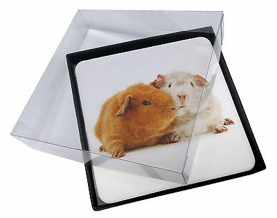 4x Guinea Pig Print Picture Table Coasters Set in Gift Box, GIN-2C