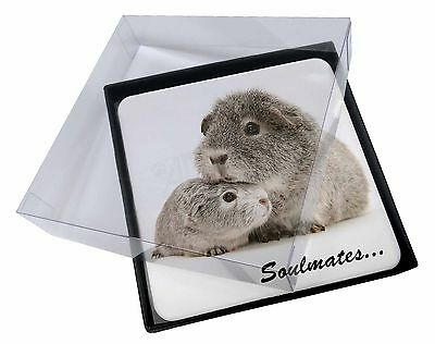 4x Silver Guinea Pigs 'Soulmates' Picture Table Coasters Set in Gift B, SOUL-86C