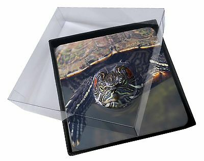 4x Terrapin Intrigued by Camera Picture Table Coasters Set in Gift Box, AR-T1C