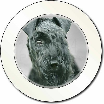 Kerry Blue Terrier Dog Car/Van Permit Holder/Tax Disc Gift, AD-KB1T