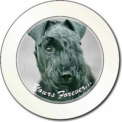 Kerry Blue Terrier 'Yours Forever' Car/Van Permit Holder/Tax Disc Gift, AD-KB1yT