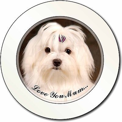 Maltese Dog 'Love You Mum' Car/Van Permit Holder/Tax Disc Gift, AD-M1lymT