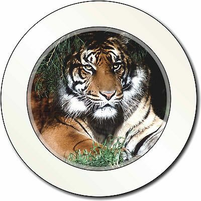 Bengal Tiger in Sunshade Car/Van Permit Holder/Tax Disc Gift, AT-10T