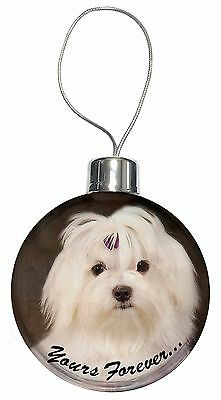 Maltese Dog 'Yours Forever' Christmas Tree Bauble Decoration Gift, AD-M1yCB