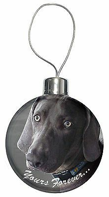 Weimaraner Dog 'Yours Forever' Christmas Tree Bauble Decoration Gift, AD-W79CB