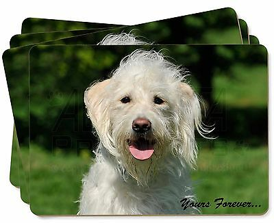 White Labradoodle 'Yours Forever' Picture Placemats in Gift Box, AD-LD3yP
