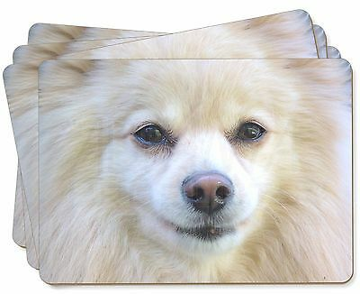 Japanese Spitz Dog Picture Placemats in Gift Box, AD-PA61P