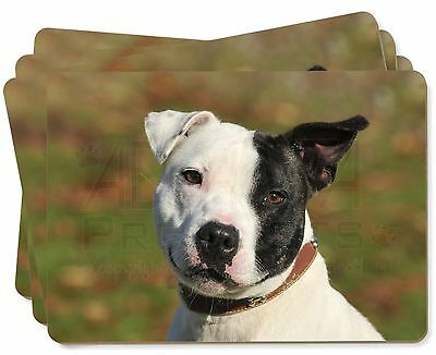 AD-SBT13P Staffordshire Bull Terrier Picture Placemats in Gift Box