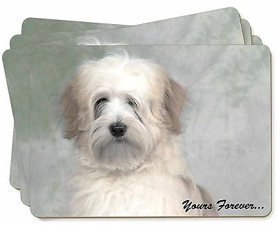 Tibetan Terrier 'Yours Forever' Picture Placemats in Gift Box, AD-TT1yP
