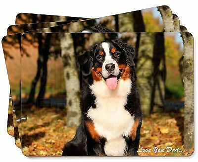 Bernese Mountain Dog 'Love You Dad' Picture Placemats in Gift Box, DAD-9P