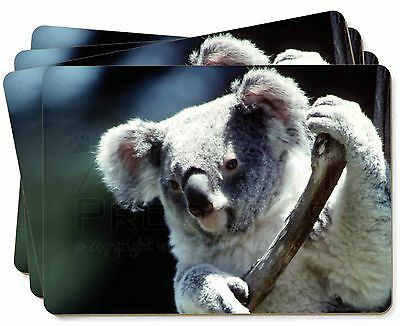 Cute Koala Bear Picture Placemats in Gift Box, AKB-1P