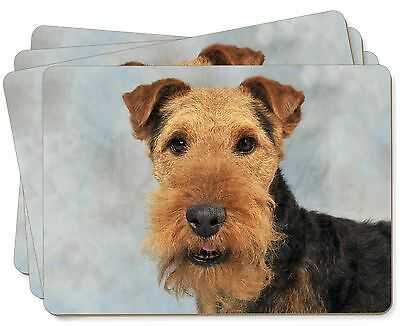 Welsh Terrier Dog Picture Placemats in Gift Box, AD-WT1P