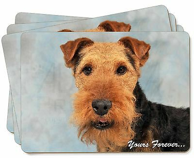 Welsh Terrier 'Yours Forever' Picture Placemats in Gift Box, AD-WT1yP