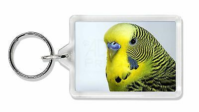 Yellow Budgerigar, Budgie Photo Keyring Animal Gift, AB-51K