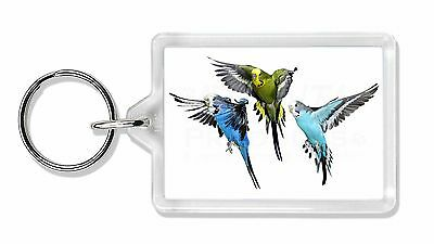 Budgerigars, Budgies in Flight Photo Keyring Animal Gift, AB-94K