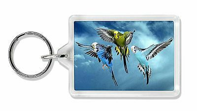 Budgies in Flight Photo Keyring Animal Gift, AB-96K